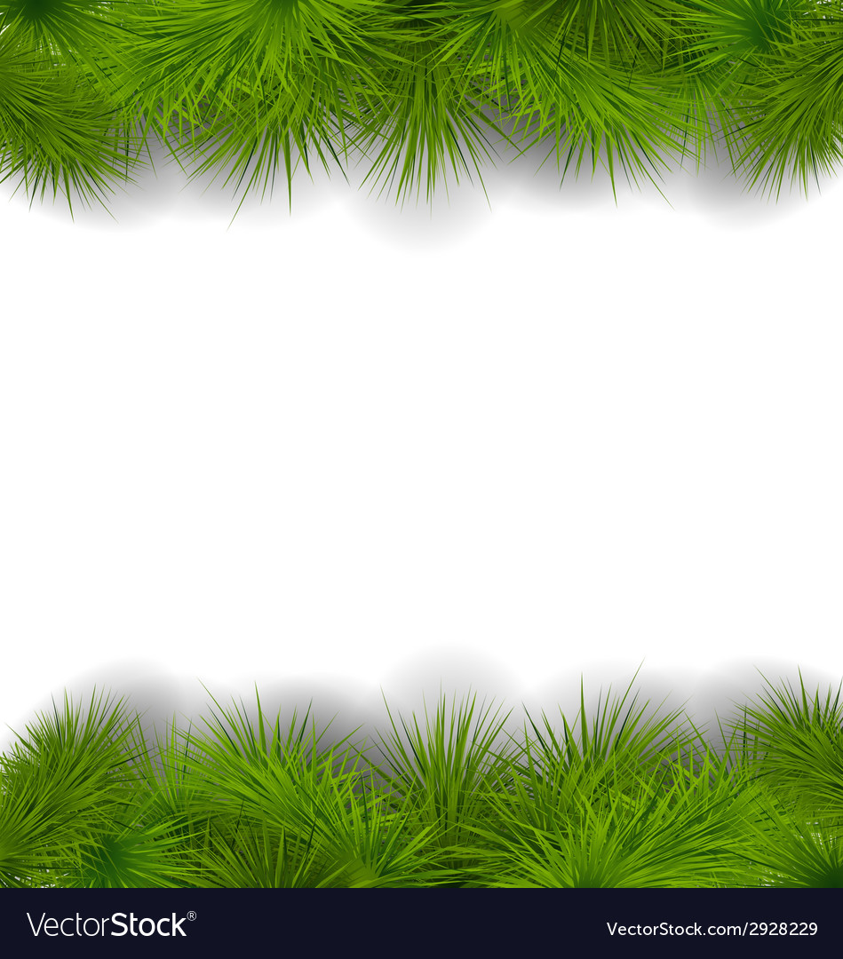 Christmas frame made in realistic fir twigs vector | Price: 1 Credit (USD $1)
