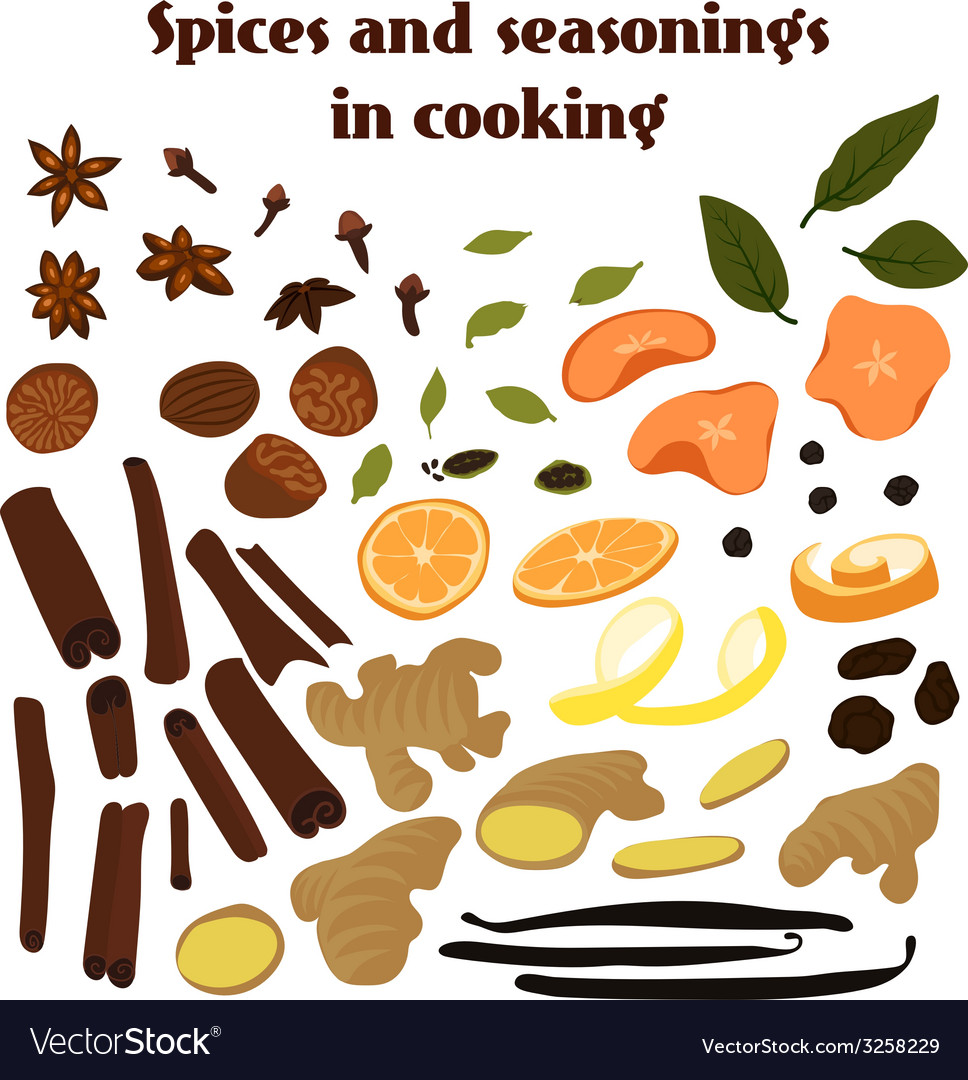 Set of spices vector | Price: 1 Credit (USD $1)