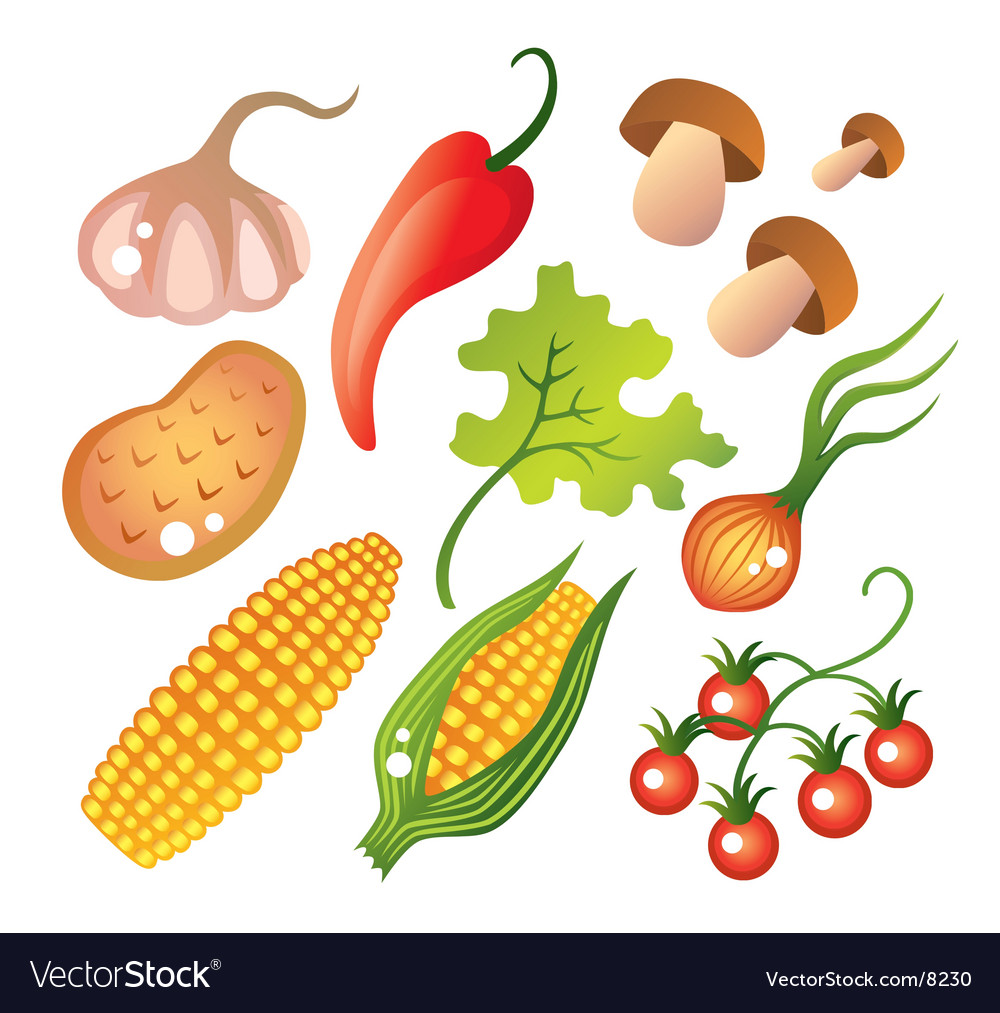 Set of vegetables vector | Price: 3 Credit (USD $3)