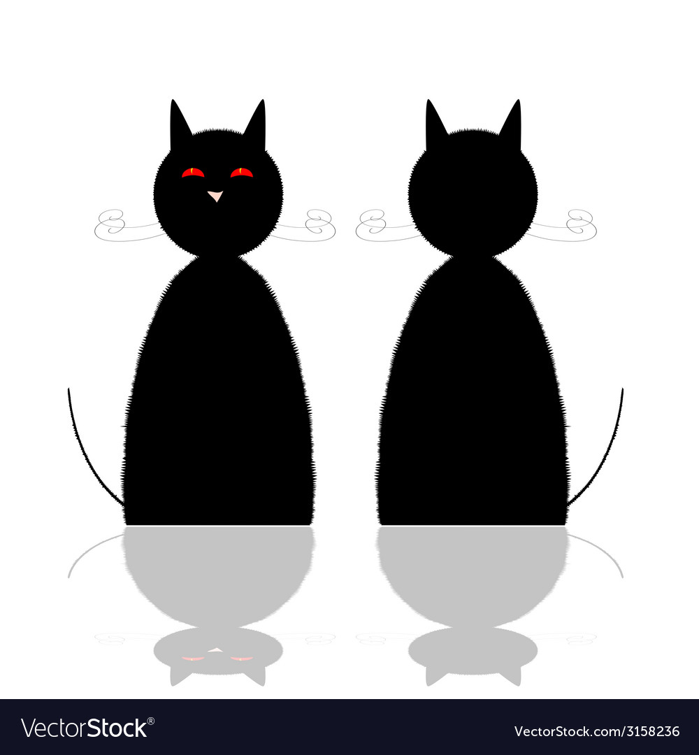 Cat front and back position vector | Price: 1 Credit (USD $1)