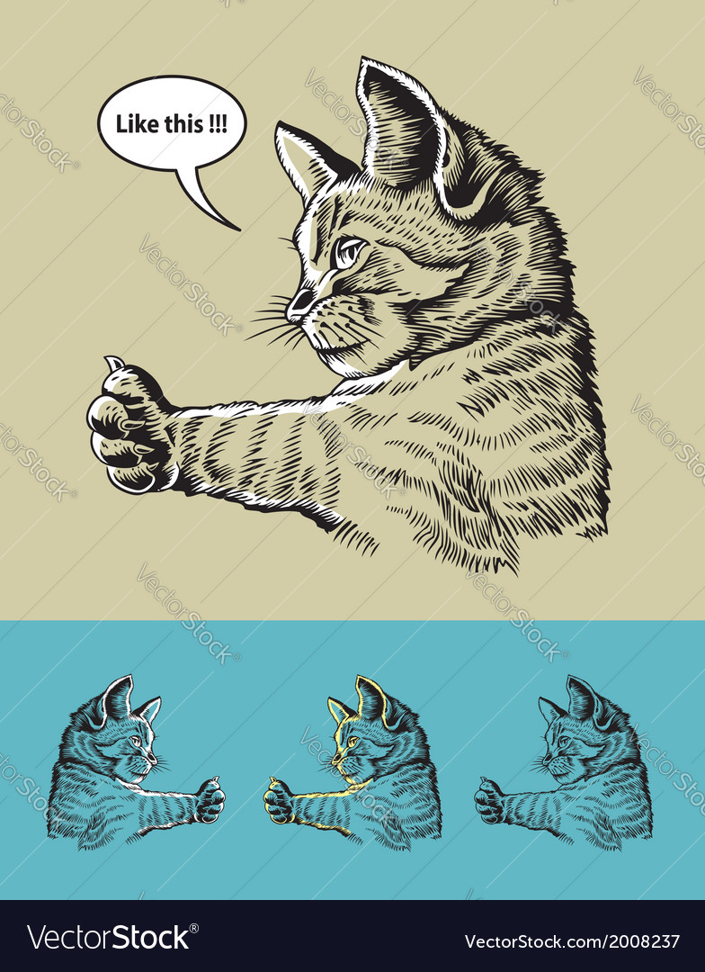 Thumb up cat vector | Price: 1 Credit (USD $1)