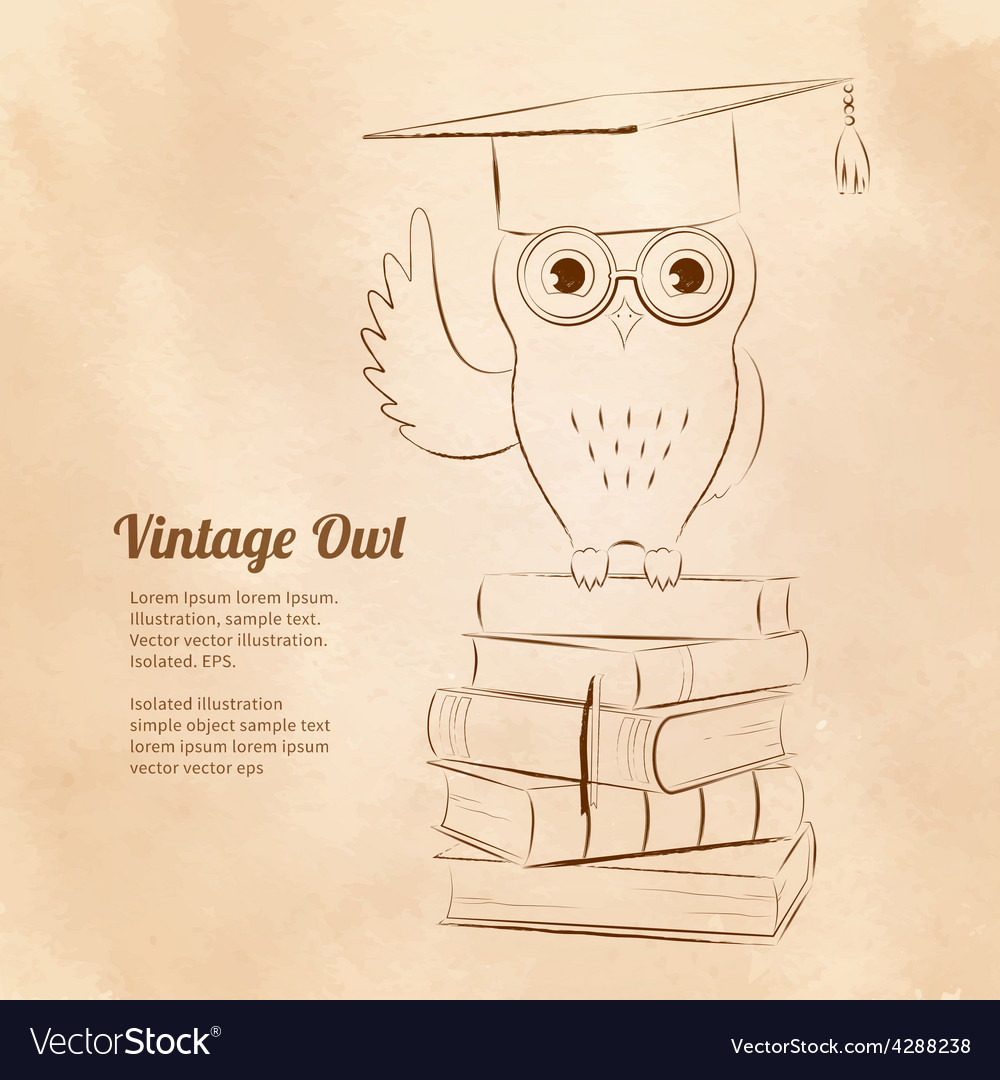 Owl sitting on books vector | Price: 1 Credit (USD $1)