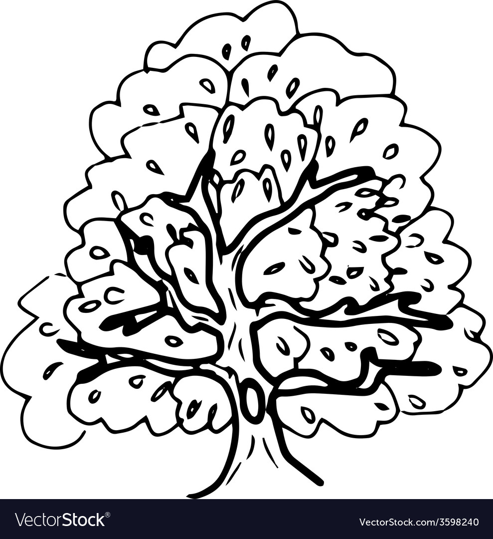 Hollow tree vector | Price: 1 Credit (USD $1)