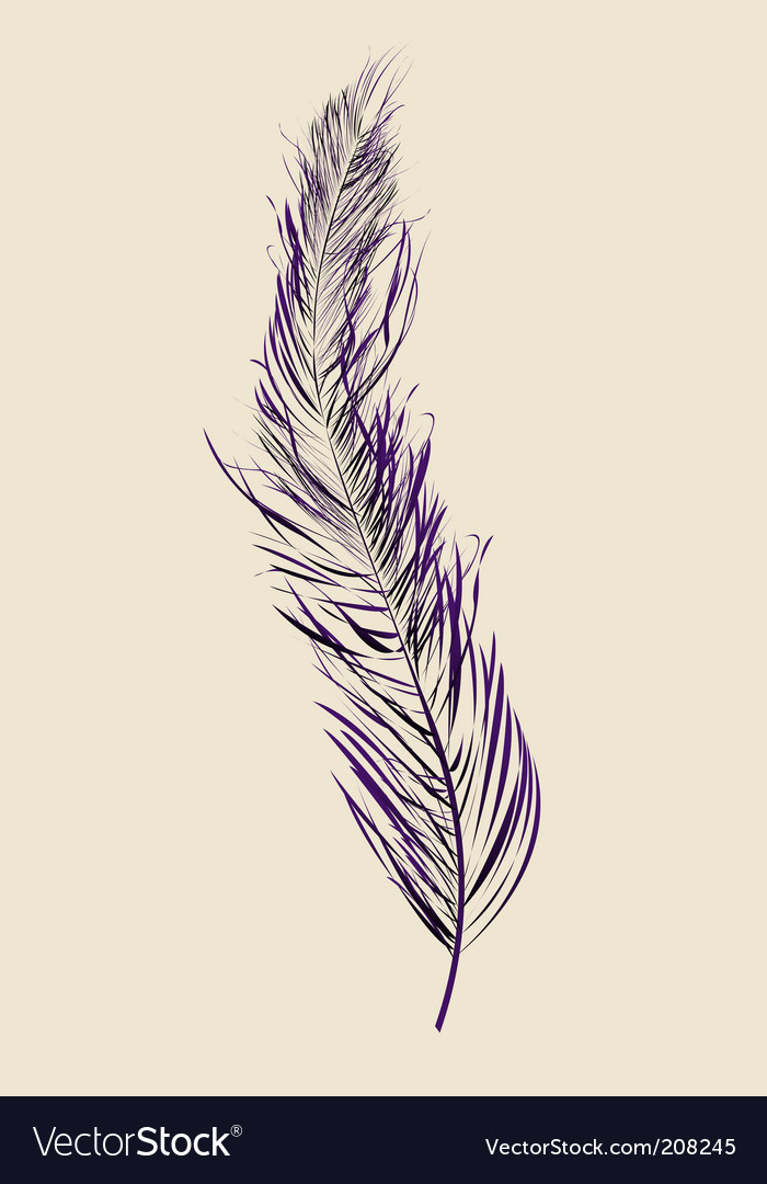 Purple feather vector | Price: 1 Credit (USD $1)