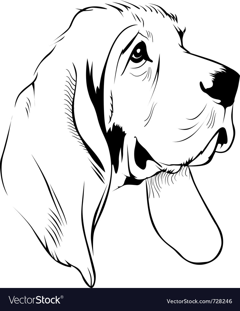 Dog face vector | Price: 1 Credit (USD $1)