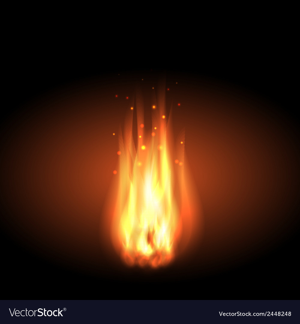 Fire realistic flames on a black background vector | Price: 1 Credit (USD $1)