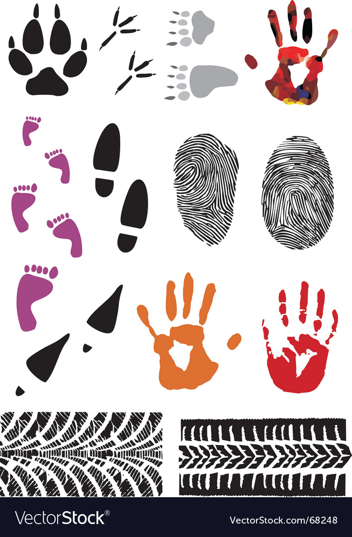 Imprint set vector | Price: 1 Credit (USD $1)