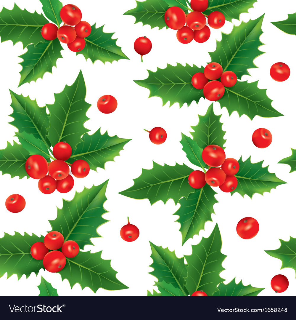 Seamless pattern of holly berries vector | Price: 1 Credit (USD $1)