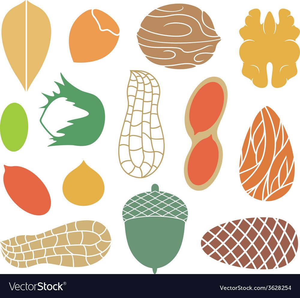 Nut vector   Price: 1 Credit (USD $1)