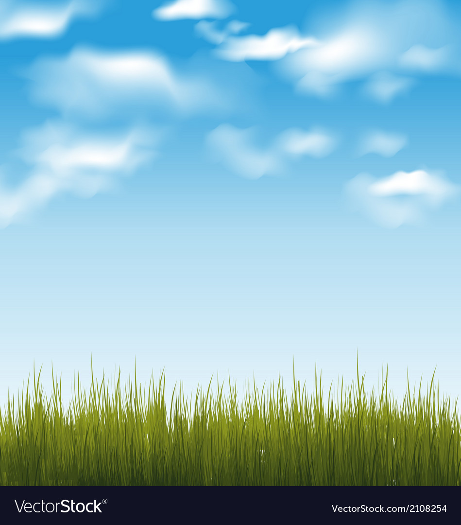 Spring background with green grass and sky vector | Price: 1 Credit (USD $1)