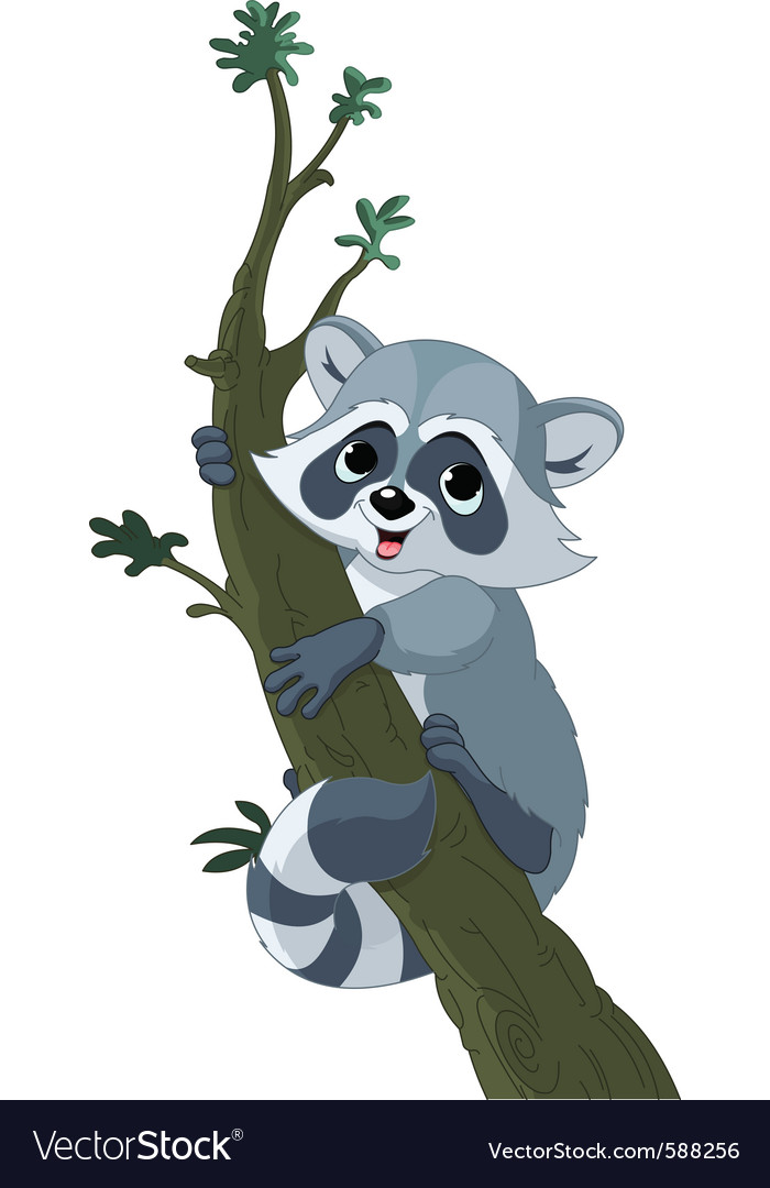 Funny cartoon raccoon vector | Price: 1 Credit (USD $1)