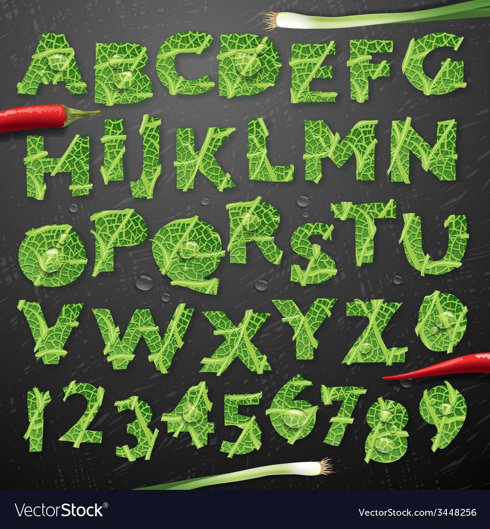 Green leaf lettuce alphabet vector | Price: 1 Credit (USD $1)