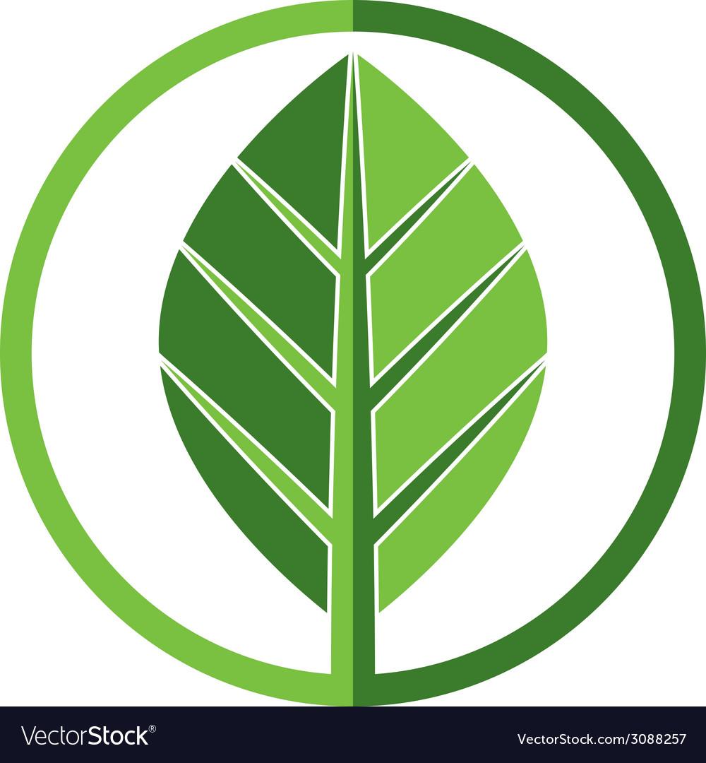 Leaf icon vector | Price: 1 Credit (USD $1)