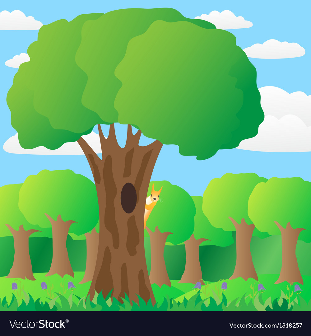 The squirrel on a tree in the forest vector | Price: 1 Credit (USD $1)