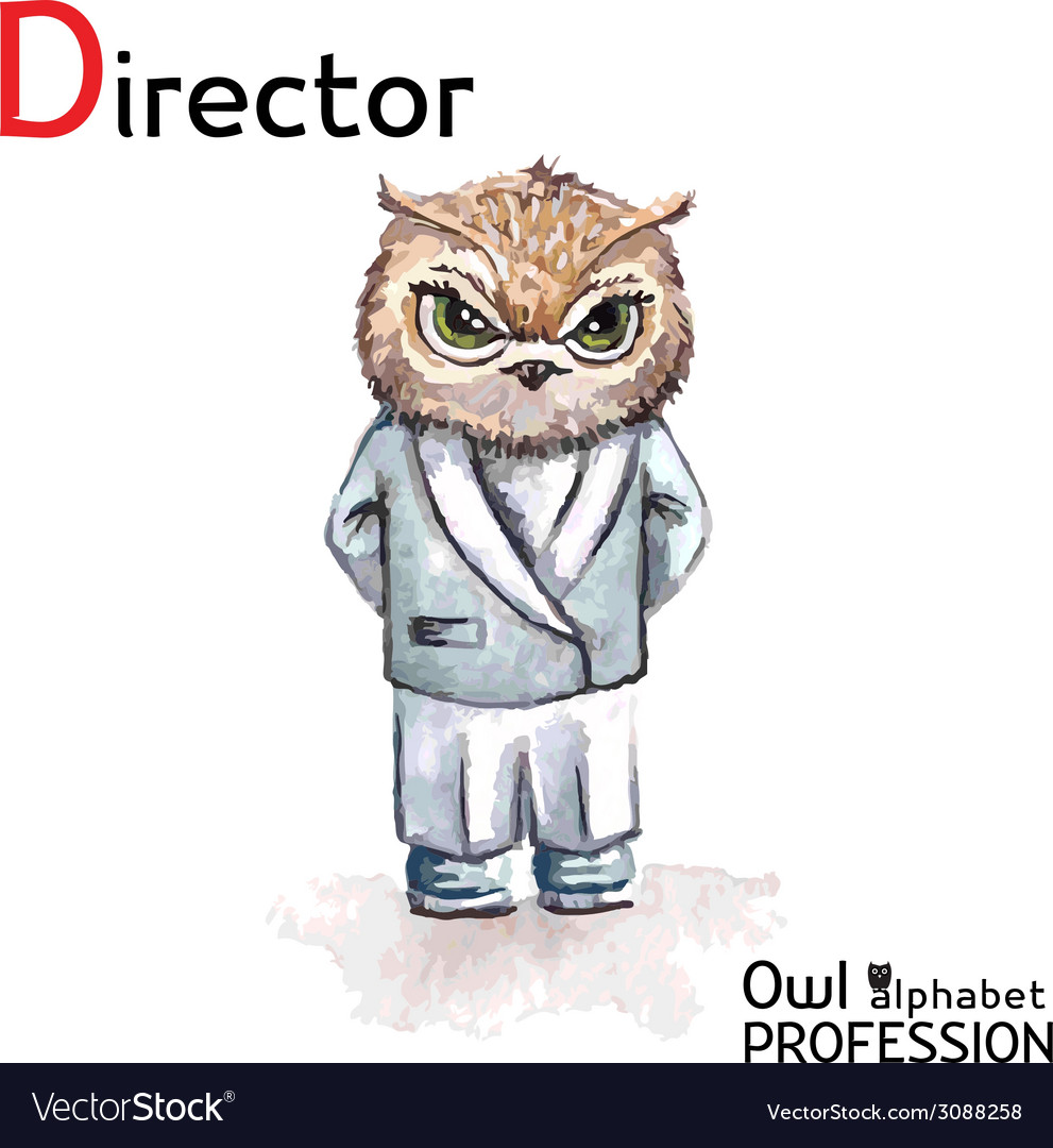 Alphabet professions owl letter d - director vector | Price: 1 Credit (USD $1)