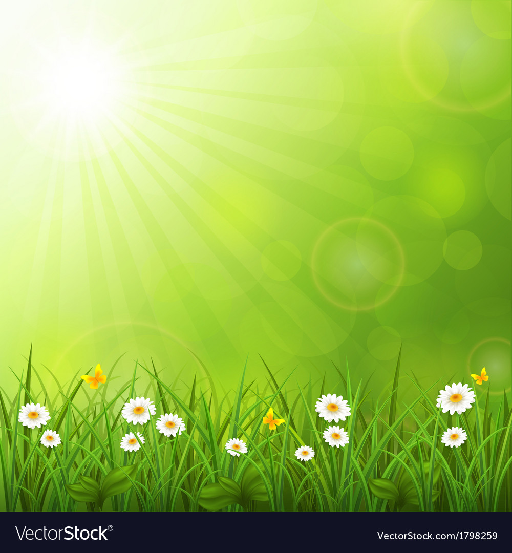 Summer background with grass vector | Price: 1 Credit (USD $1)
