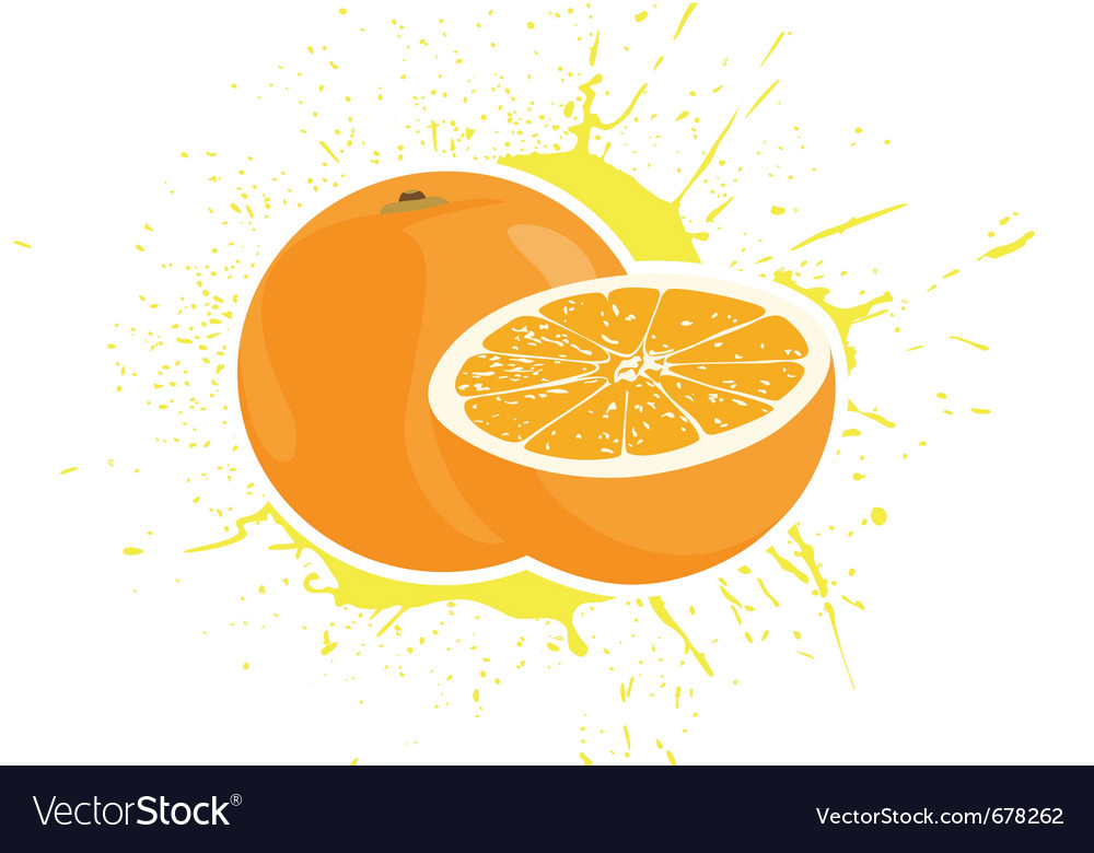 Yummy oranges vector | Price: 1 Credit (USD $1)