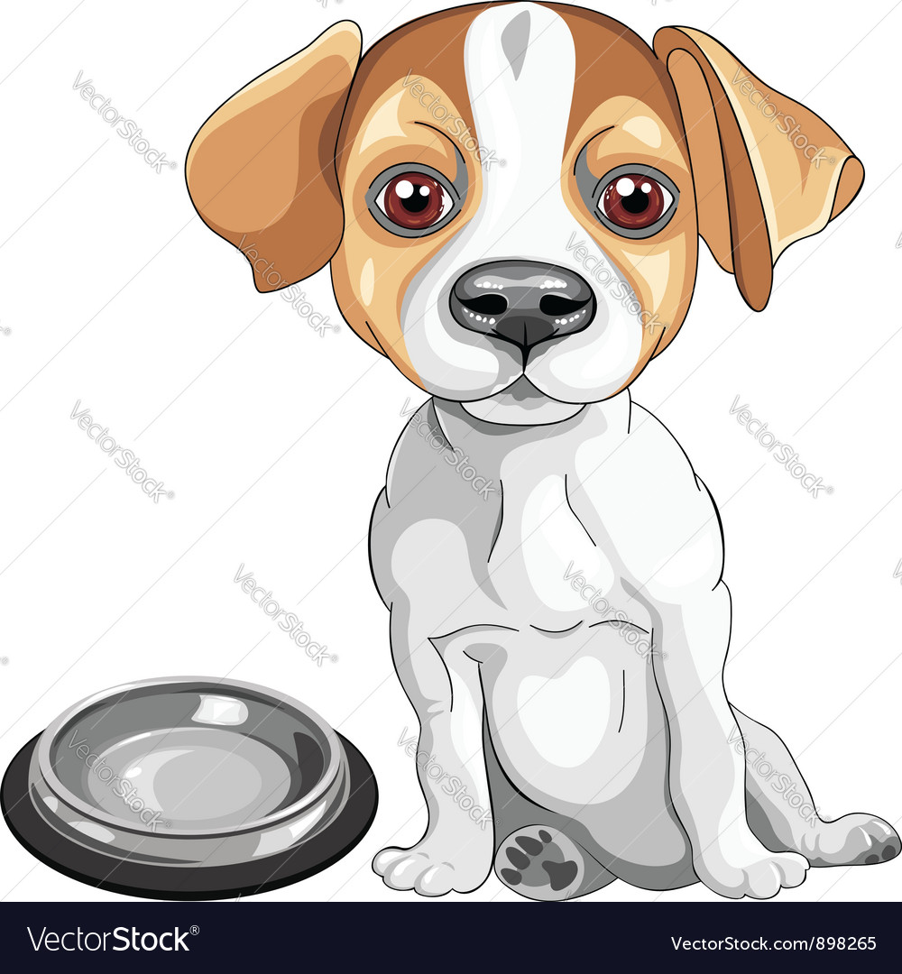 Dog jack russell terrier breed vector | Price: 3 Credit (USD $3)