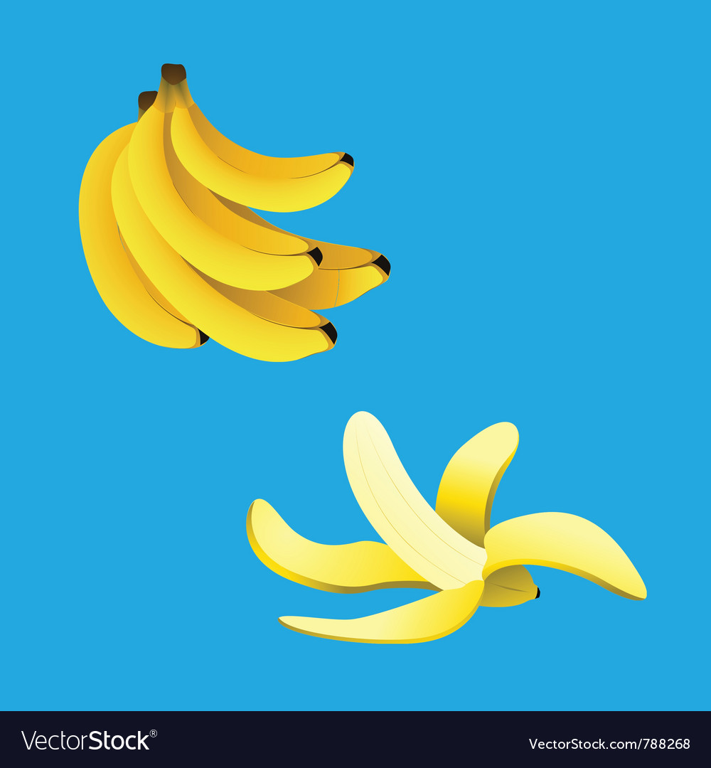 Banana collection vector | Price: 1 Credit (USD $1)
