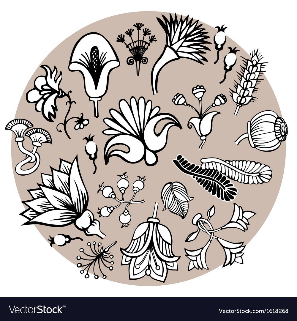Fantasy floral elements vector   Price: 1 Credit (USD $1)