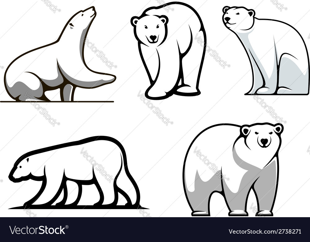 White polar bears set vector | Price: 1 Credit (USD $1)