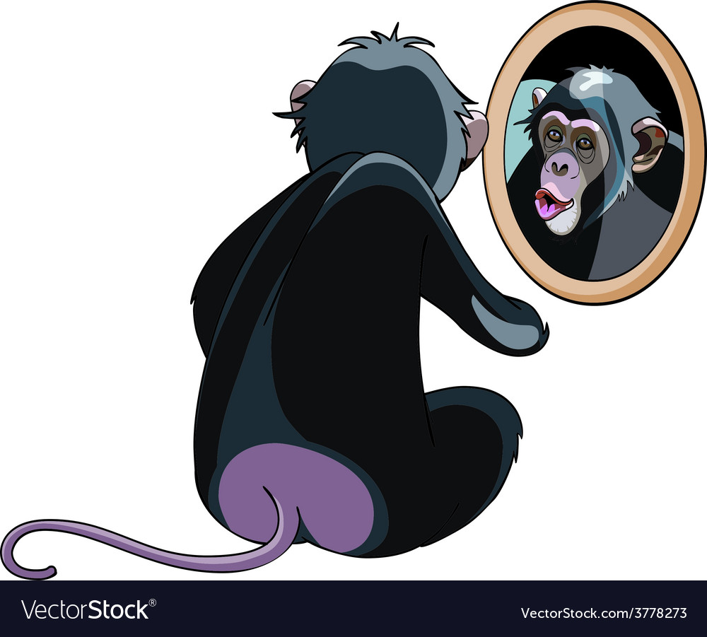 Cartoon monkey looking in the mirror vector | Price: 3 Credit (USD $3)