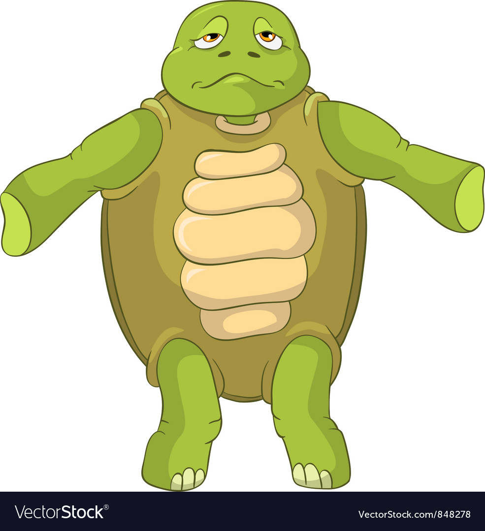 Funny turtle confusion vector | Price: 3 Credit (USD $3)