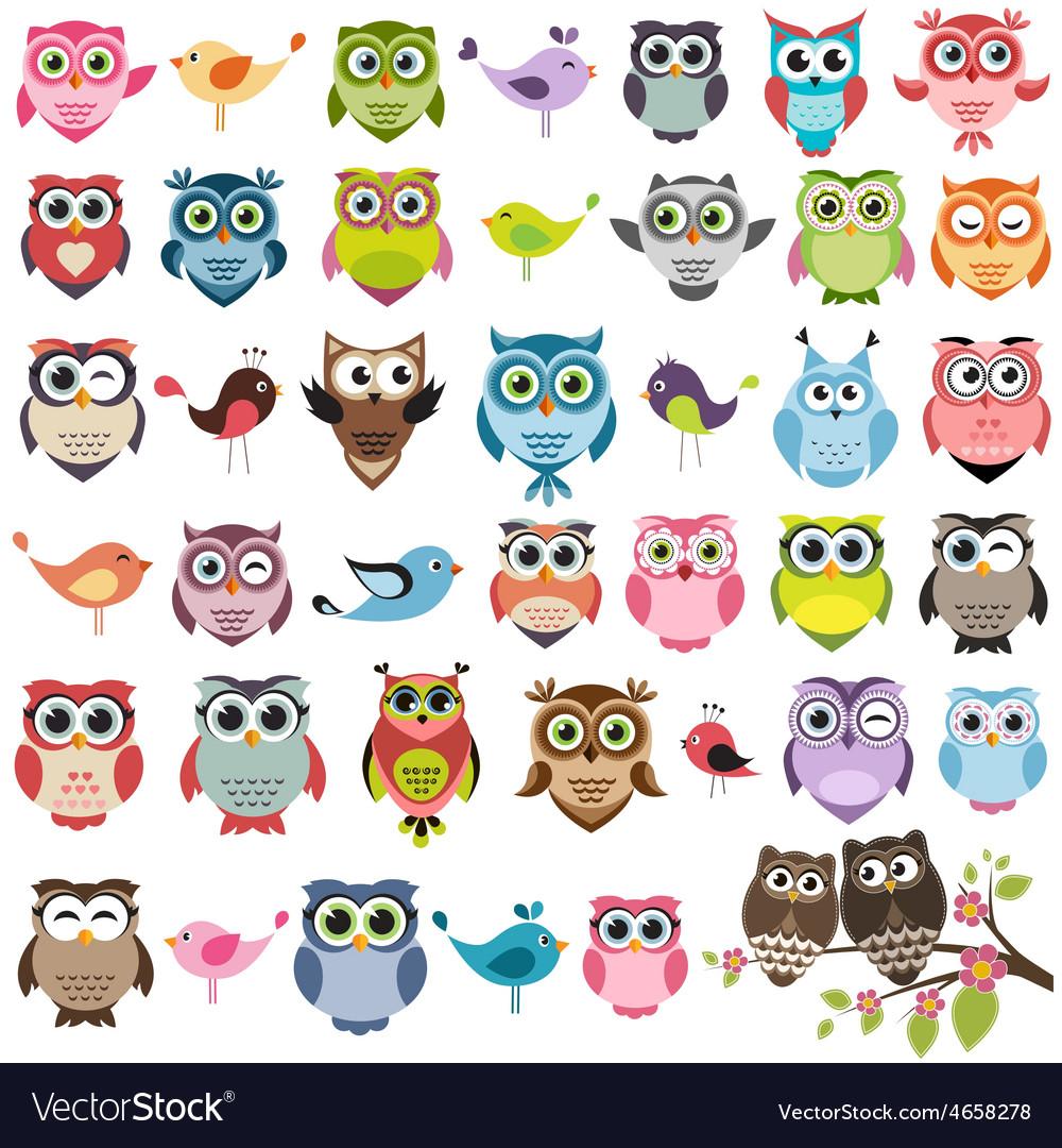 Set of color cartoon owls vector | Price: 1 Credit (USD $1)