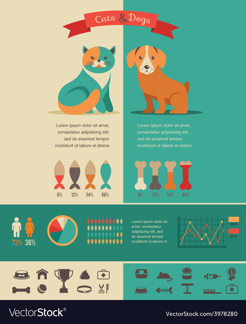 Cat and dog infographics with icons set vector | Price: 1 Credit (USD $1)