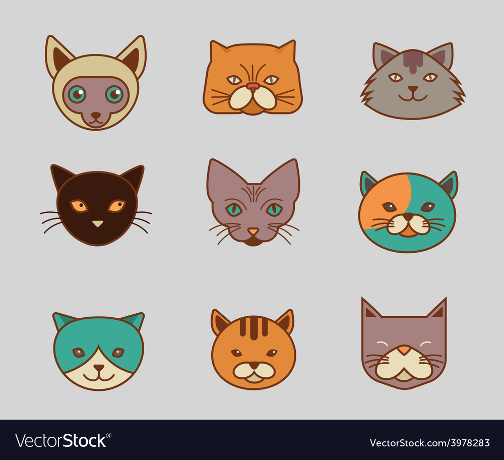 Collection of cat line and color icons vector | Price: 1 Credit (USD $1)