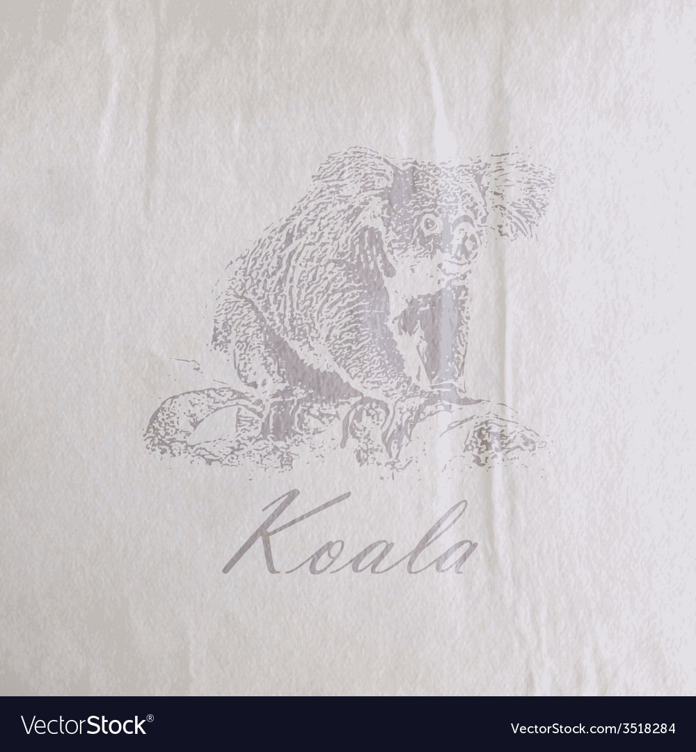 Vintage of a koala bear on the old wrinkled paper vector | Price: 1 Credit (USD $1)