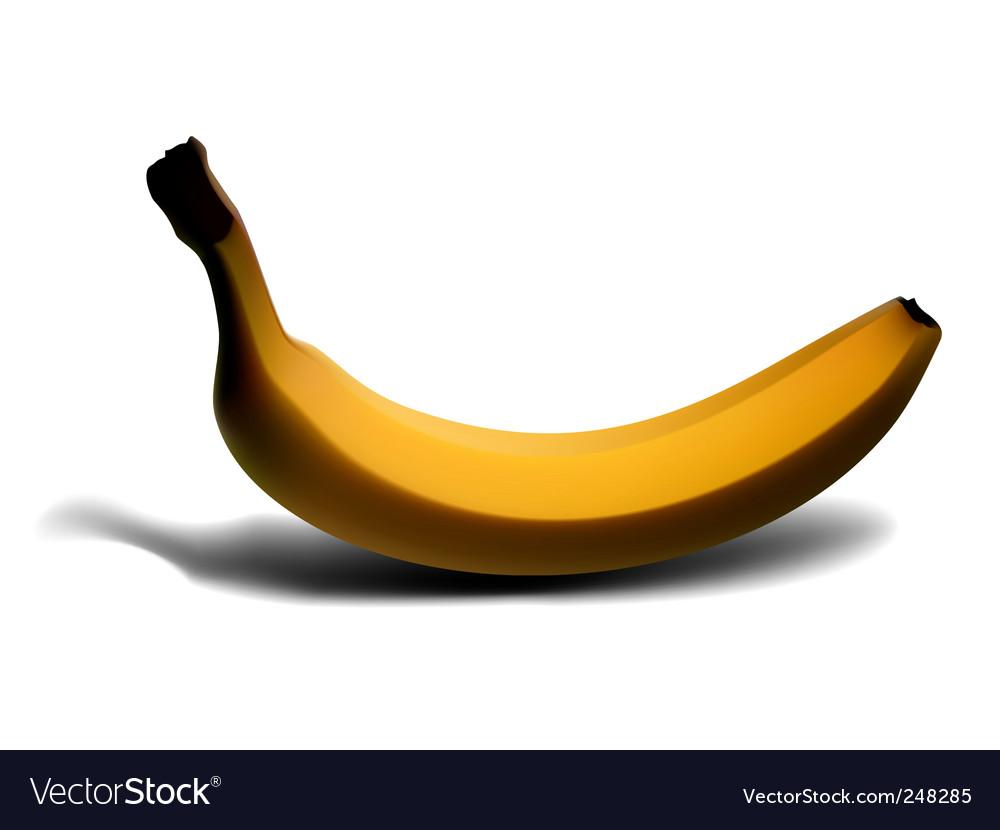 Banana vector | Price: 3 Credit (USD $3)