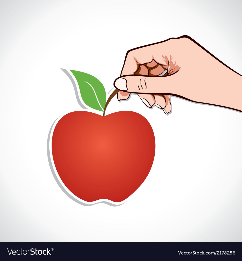 Apple in hand vector | Price: 1 Credit (USD $1)