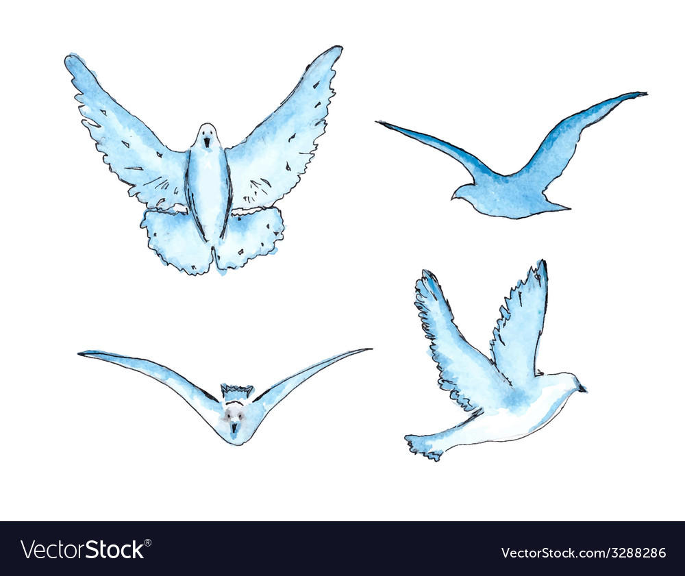Series of watercolor drawn birds vector   Price: 1 Credit (USD $1)