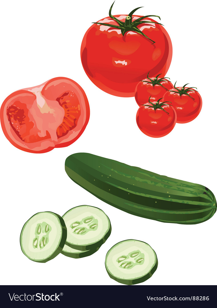 Tomato cucumber vector | Price: 1 Credit (USD $1)
