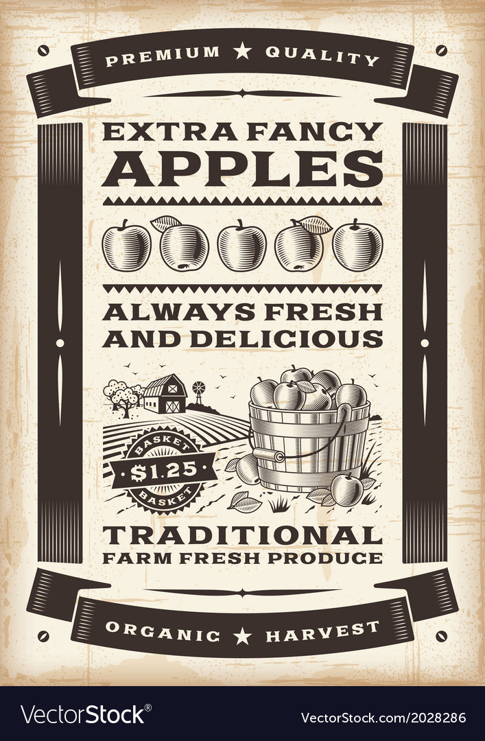 Vintage apple harvest poster vector | Price: 1 Credit (USD $1)