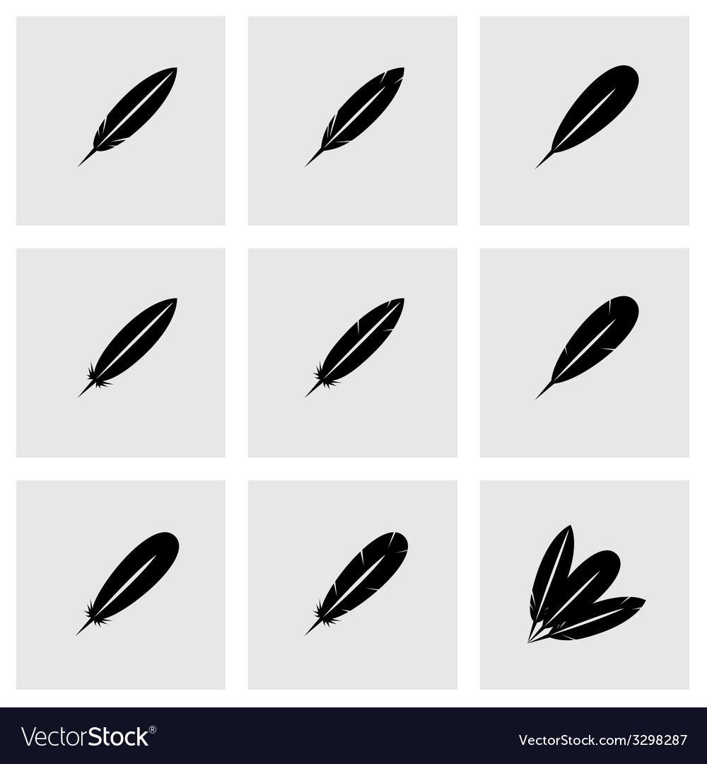 Black feather icon set vector | Price: 1 Credit (USD $1)
