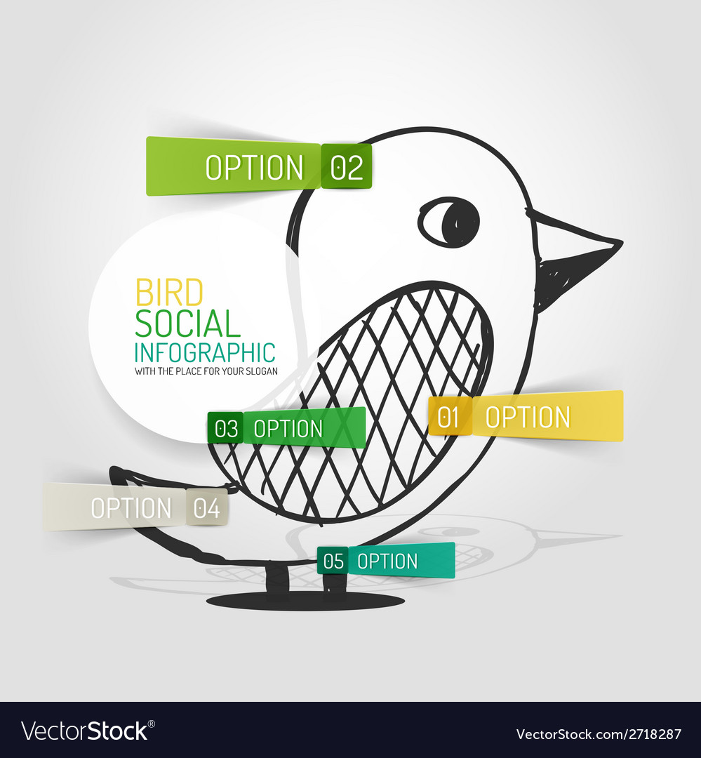 Drawn social bird design and infographics vector | Price: 1 Credit (USD $1)