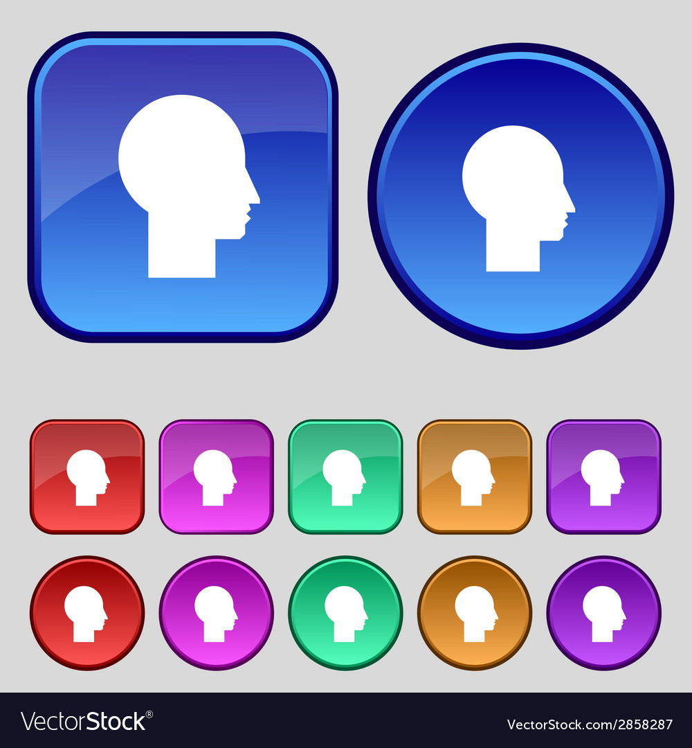 User sign icon person symbol set colourful buttons vector | Price: 1 Credit (USD $1)