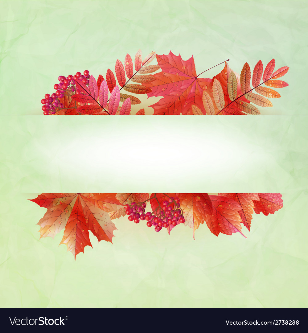 Autumn abstract background with colorful leafs vector | Price: 1 Credit (USD $1)