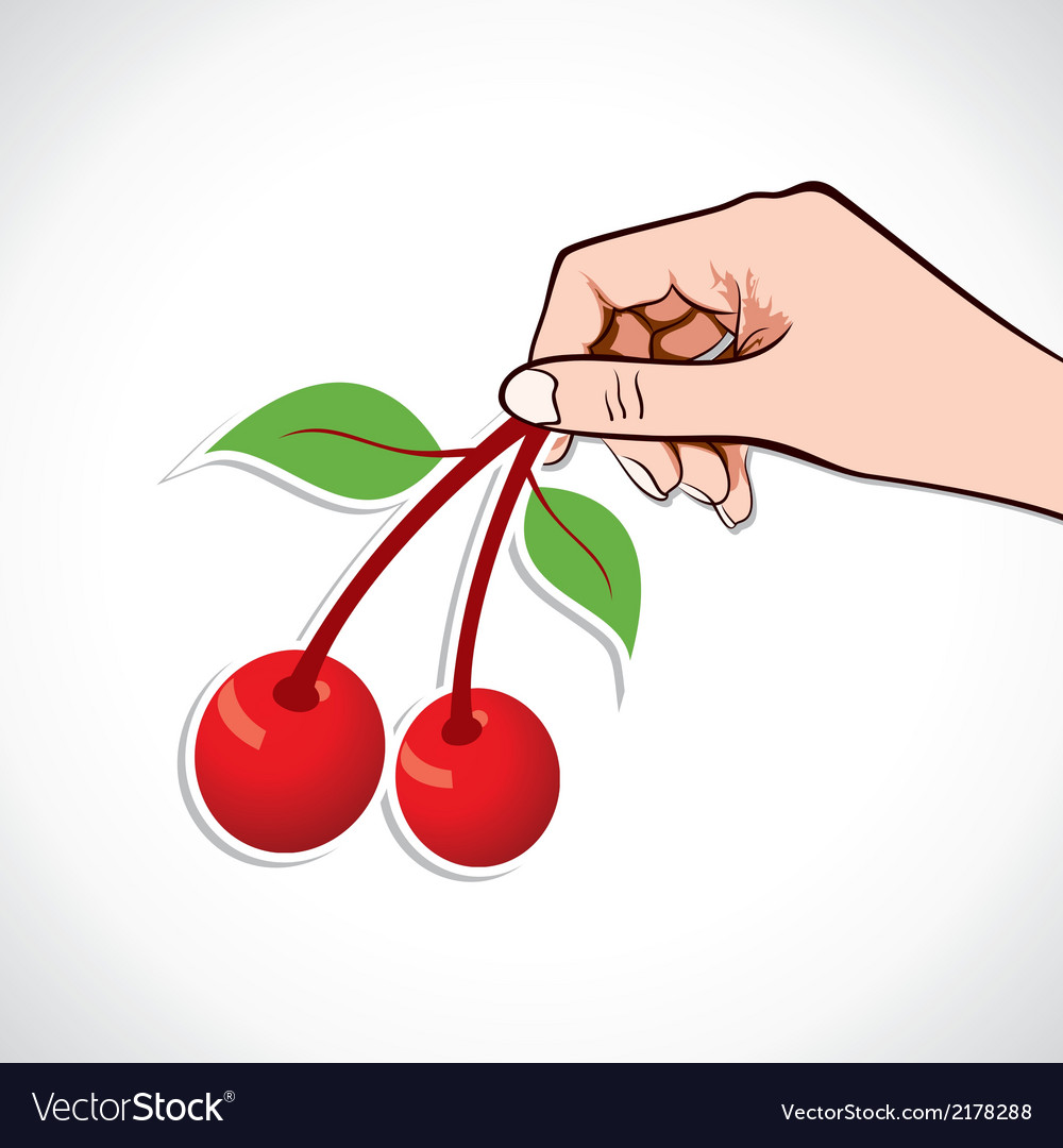 Cherry in hand vector | Price: 1 Credit (USD $1)