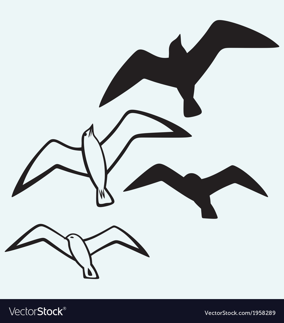 Silhouette of seagulls vector | Price: 1 Credit (USD $1)