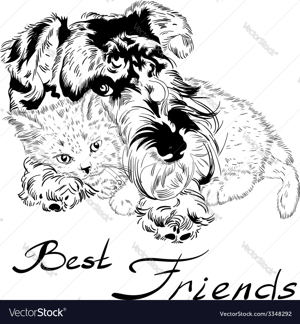 Sweet dog with cute kitten hand drawing vector   Price: 1 Credit (USD $1)