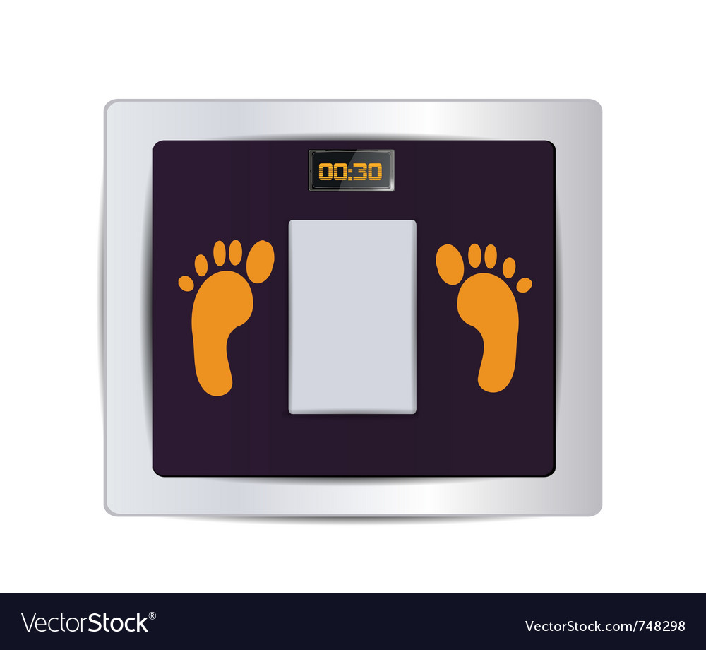 Body fat scale isolated vector | Price: 1 Credit (USD $1)