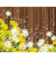Spring flowers wood vector