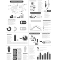 Infographic demographics new style grey vector