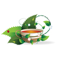 Cup of herbal tea vector