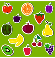 Fruit and berries on green background vector