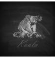 A chalk koala bear on the blackboard texture vector