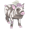 Fashion pot-bellied pig in beautiful hat vector
